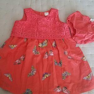 Gap butterflies dress